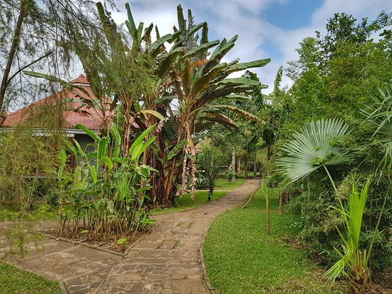 Arusha Planet Lodge: 20180608_120630-01_large.jpg
