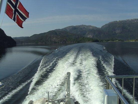 Roedne Fjord Cruise: speedy gonsales