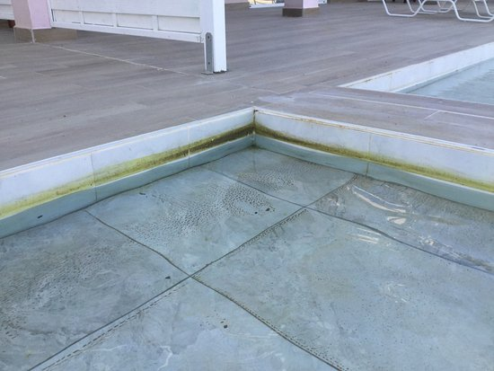 Kairaba Sandy Villas: Dirty Swim-Up-Pool