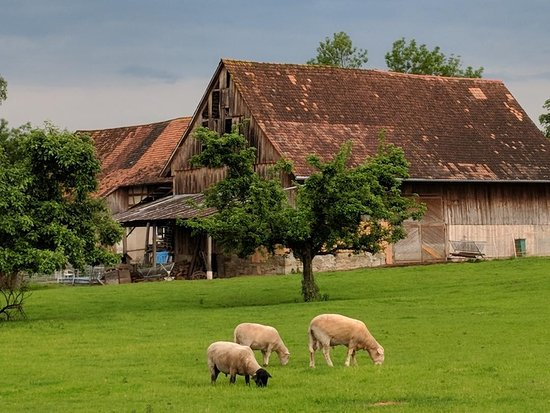Guttingen, Switzerland: a farm near by