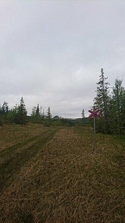 Ankarvattnet, السويد: DSC_2950_large.jpg