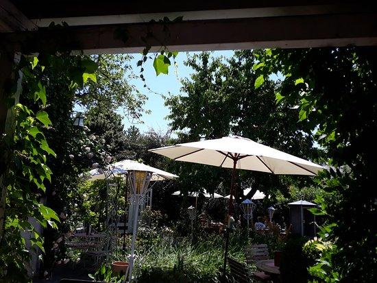Blick In Den Garten Bild Von Cafe Hopker Friedrichshafen