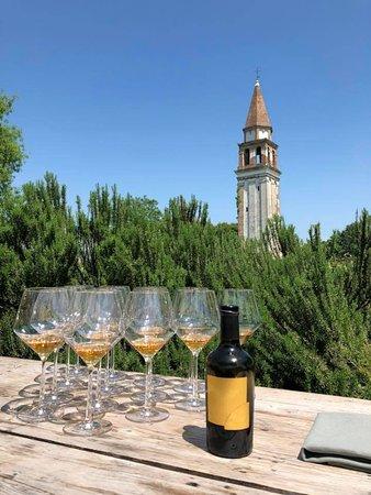 Mazzorbo, Italy: vine testing