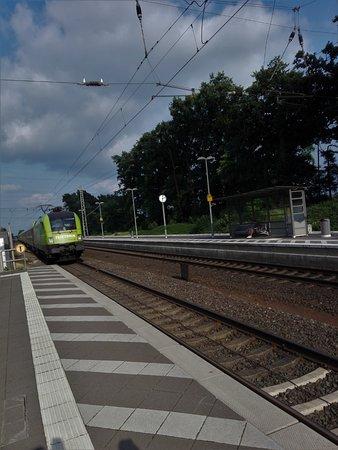 ES64 U2- 005 vor Flixtrain in Sottrum Bhf (2)