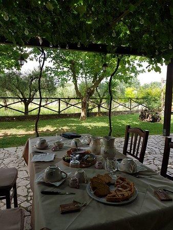 Altavilla Silentina, Italie : 20180610_101922_large.jpg