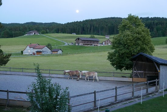 Gais, Swiss: view from our room - the farms
