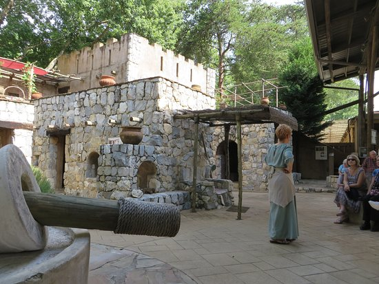 Biblical History Center: Archaeological Replica Garden with docent Judy.