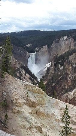 Cody Shuttle Service and Yellowstone Tours Foto