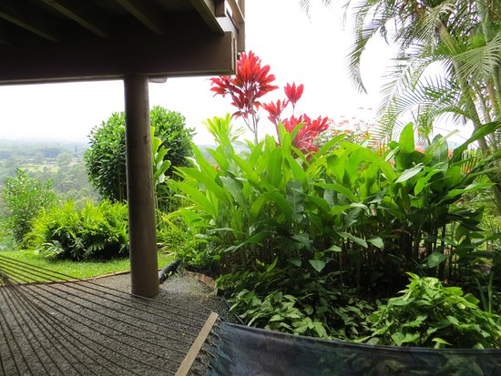 Maui Tradewinds: View from the Private Hammock for two