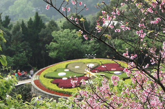 Yangmingshan National Park and...