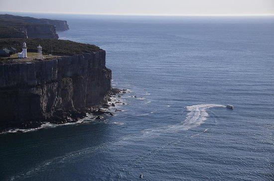 Aventura ecológica en la bahía de...