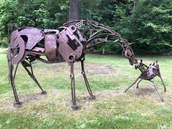 Ashford, WA: Iron Horses