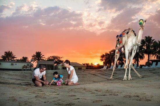 Sealine Beach  A Murwab Resort  Qatar  Mesaieed