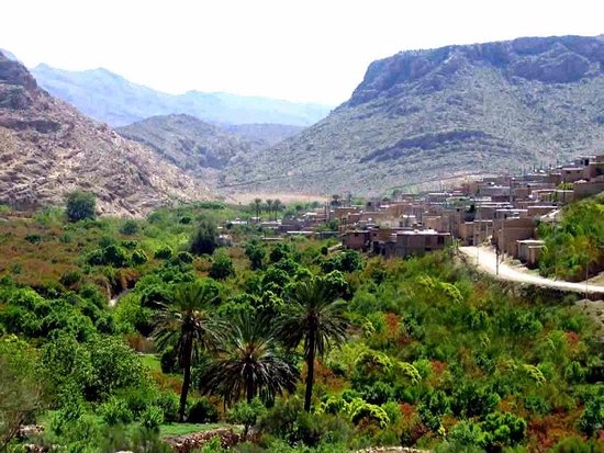 Fars Province, Iran: the old village near it  with some date trees