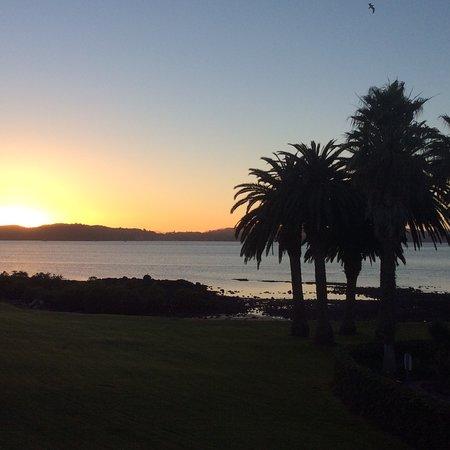 Waitangi, Nova Zelândia: photo2.jpg