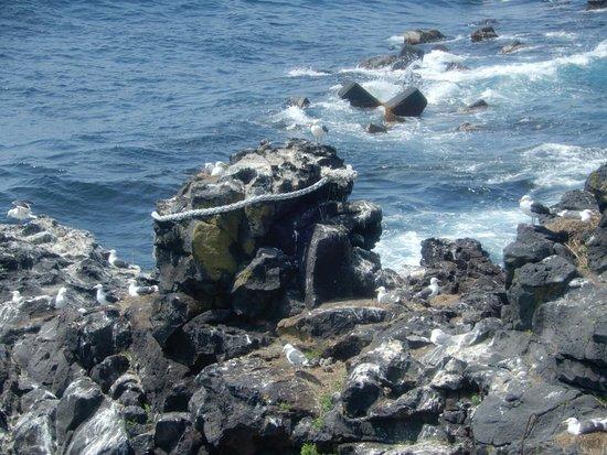 Jimmen Rock