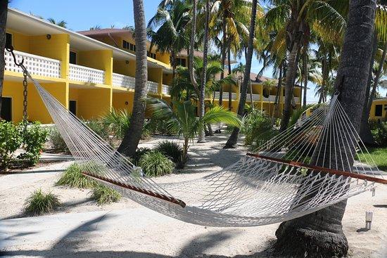 Bimini Big Game Club Resort & Marina: My spot!