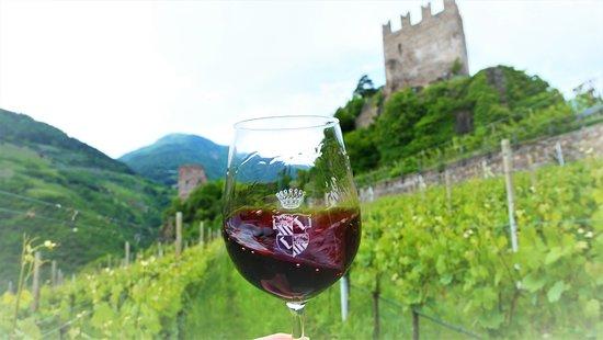 calice di Pinot nero Castelsegonzano nel vigneto ai piedi del Castello della famiglia a Prato