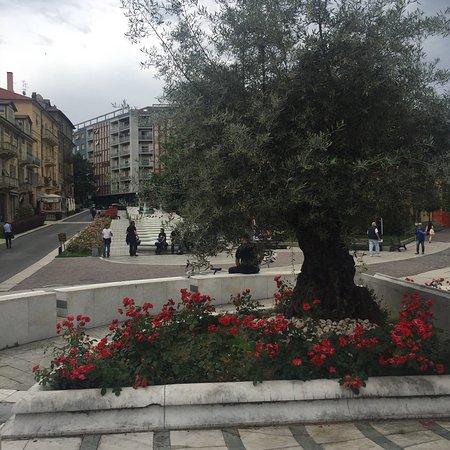 Centro storico di Acqui Terme: photo2.jpg