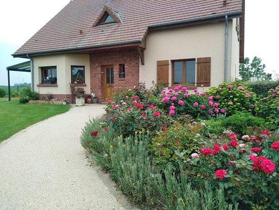 Criel-sur-Mer, Francja: Le Clos Fleuri