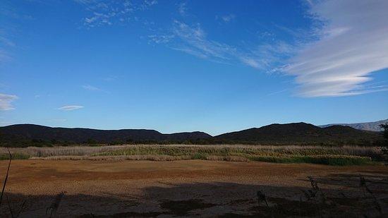 McGregor, Republika Południowej Afryki: DSC_4465_large.jpg