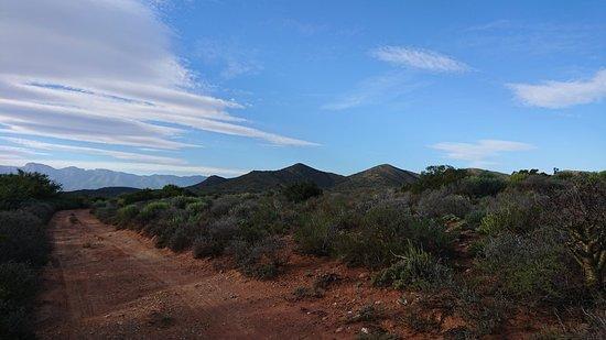McGregor, Republika Południowej Afryki: DSC_4455_large.jpg