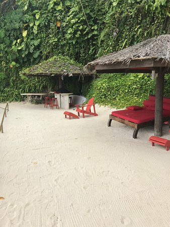 Treehouse Beach Food Music Paradise
