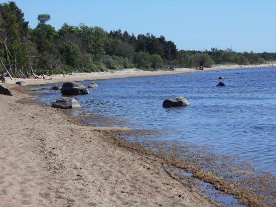 Stranden vid Laulasmaa.