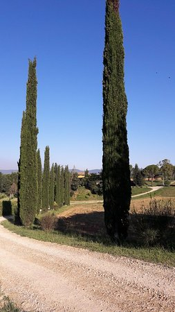 Costalpino, Italia: 20180610_074556_large.jpg