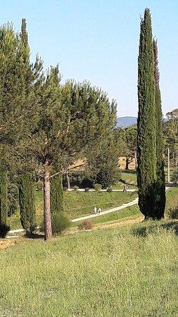 Costalpino, Italia: 20180610_075103_large.jpg