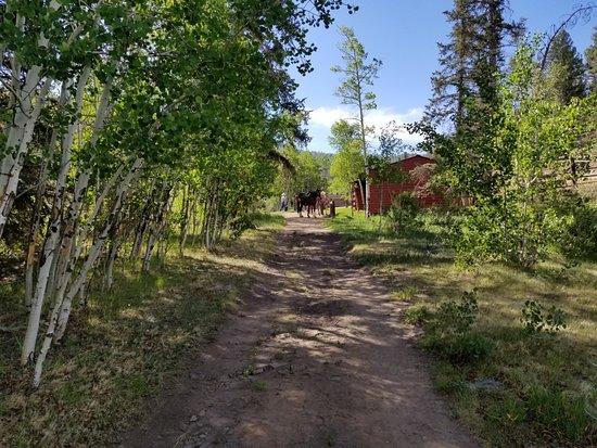 Elk Mountain Ranch: Tacking the horses