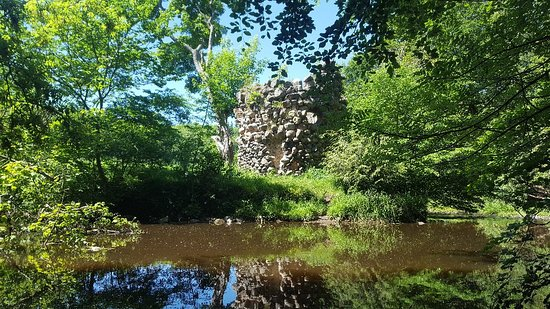 Bonnyrigg, UK: 20180605_130536_large.jpg