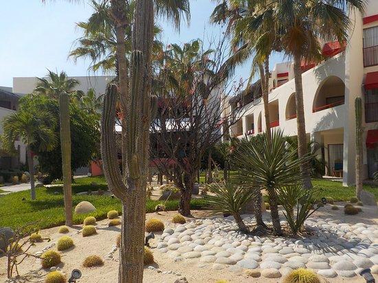Royal Decameron Los Cabos: Diverse garden area