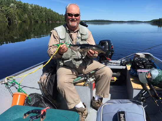 Kipawa, Kanada: Walleye caught trolling, alone surrounded by outstanding sceneries