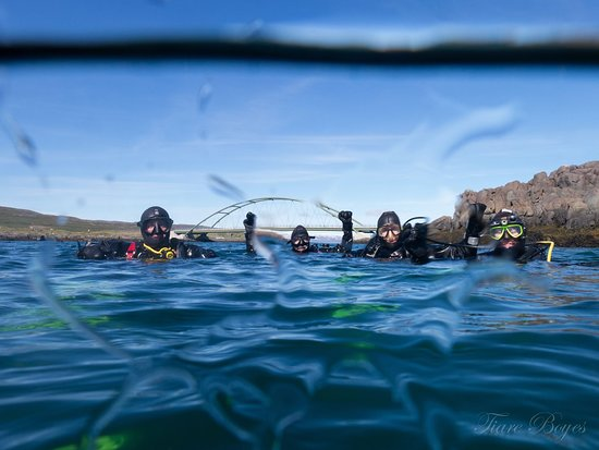 Dive Westfjords: getlstd_property_photo