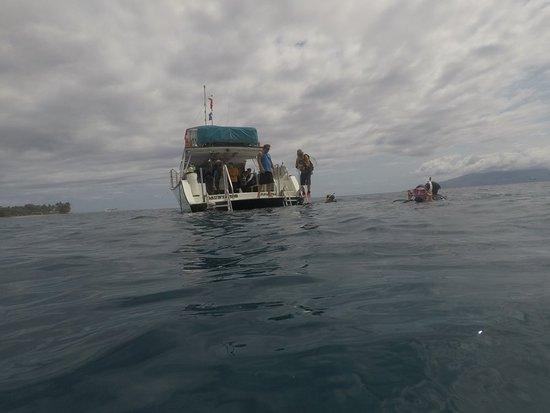 Lahaina Divers: GOPR0259_large.jpg