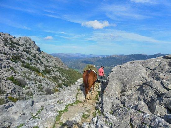 Cortes de la Frontera, España: getlstd_property_photo