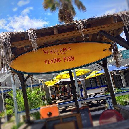 The flying fish bar and grill savannah fotos n mero de for Flying fish bar and grill
