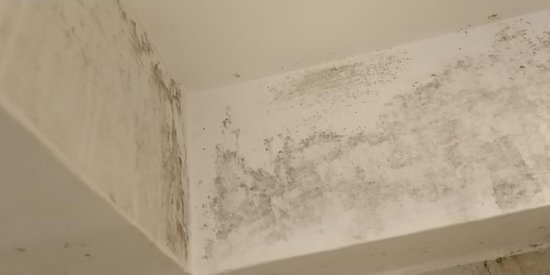 Mold On The Walls In The Bathroom Picture Of The New London Carlton Hotel London Tripadvisor