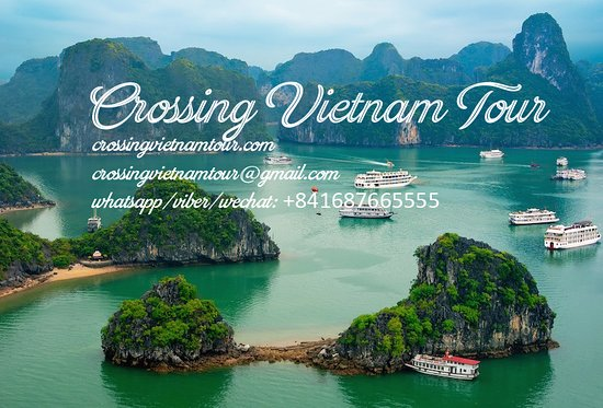 ‪Crossing Vietnam - Day Tours‬