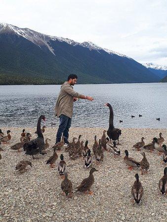 Nelson Lakes National Park: 20180604_112114_large.jpg