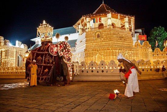 SkyHaven Tours Sri Lanka
