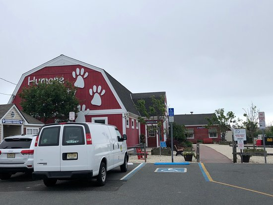‪Humane Society of Ocean City‬