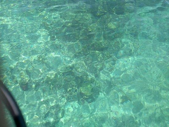 Tours en Islas del Rosario: IMG_20180413_111538912_BURST001_large.jpg