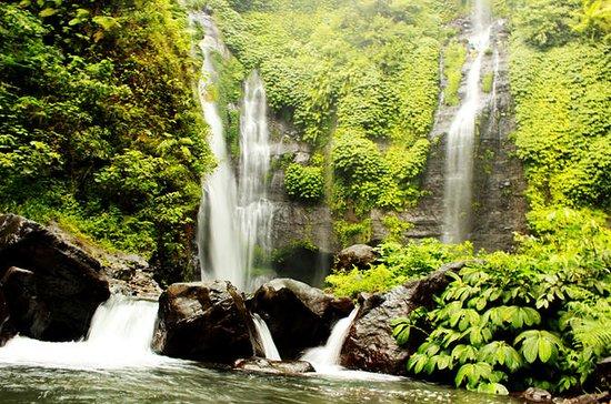 Magnificent Sekumpul waterfall & Twin