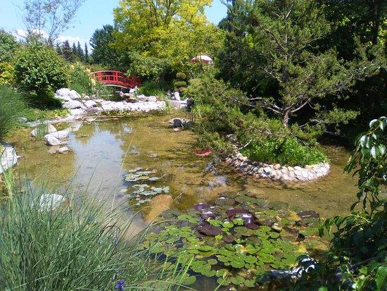 Rote Brücke Der Erleuchtung Picture Of Leyk Lotos Garten