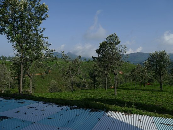Sunvalley Homestay : view from verandah of the room
