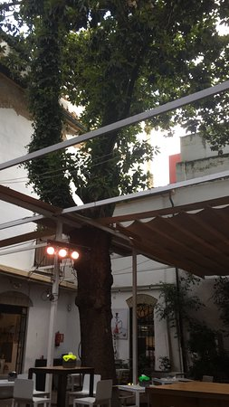 Los Patios de La Marquesa照片