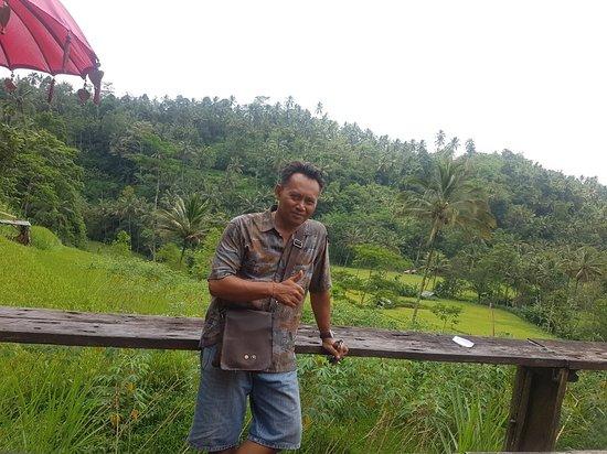 Buddy Bali