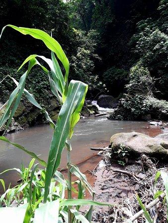 Grecia, Costa Rica: 20180611_213807_large.jpg